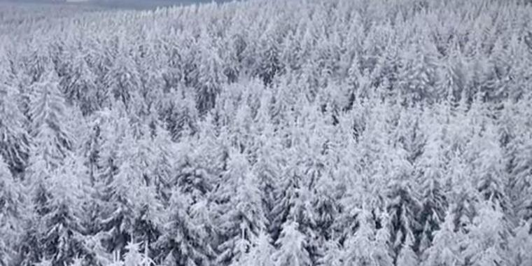 """Screenshot aus dem Imagefilm """"Being There – A Winter Story""""."""