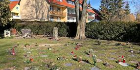 Friedhof in Grone.