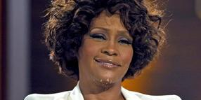 "Whitney Houston bekommt bei den MTV Europe Music Awards posthum den MTV-Preis ""Global Icon"" verliehen."