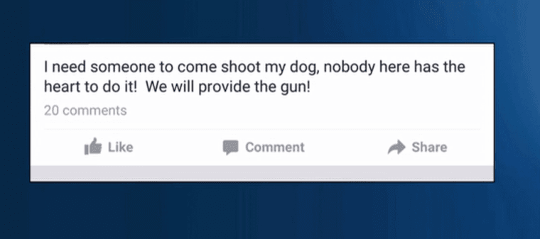 2015-09-23 06_57_47-Facebook post_ 'I need someone to shoot my dog'