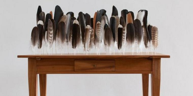Foto: Bethan Huws: Table of Feathers, Federn auf Holztisch, 2009.