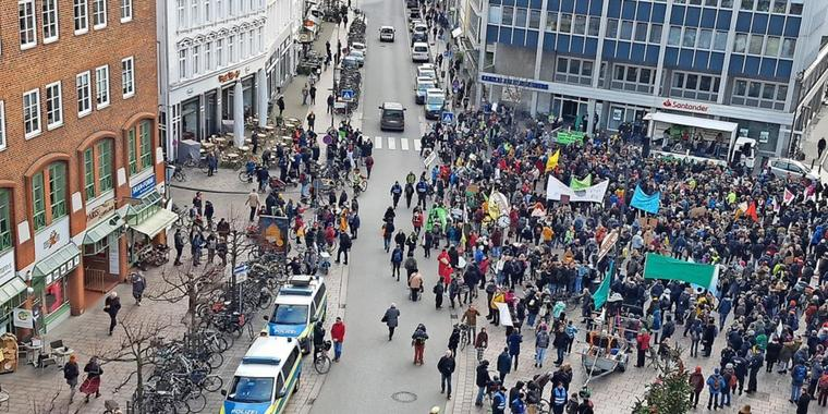 Eindrücke der Fridays for Future-Demo am 29. November in Lübeck.