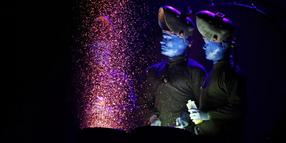 Die Blue Man Group war zu Gast in der Arena in Leipzig.