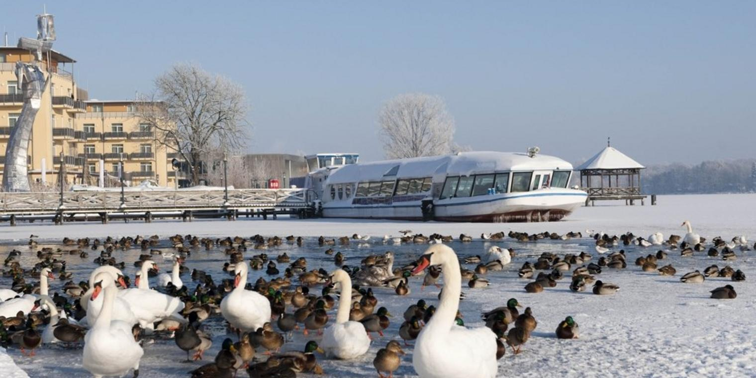Winter am Ruppiner See in Neuruppin.