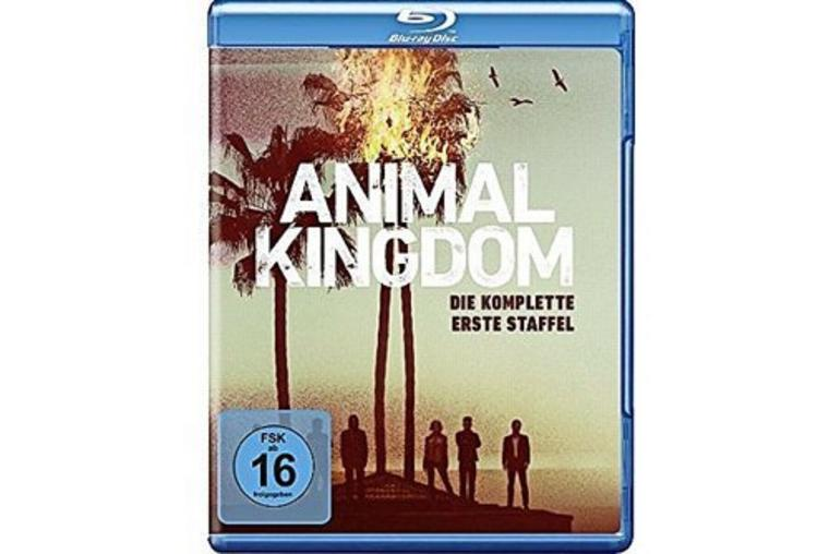 Animal Kingdom, Staffel 1