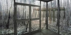 """Sabine Hornigs """"Large Cube in Forest""""."""