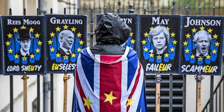 Ein Anti-Brexit-Demonstrant vor einigen Protest-Plakaten.