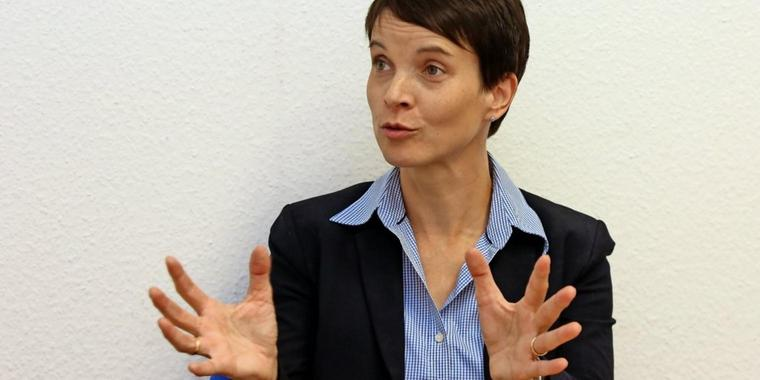 Frauke Petry hat einen Plan.
